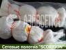 Полотно сетевое SCORPION 105х0,20*4х75х150, скр. леска
