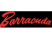 """Кастинговые сети """"Barracuda"""""""