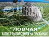 """Зонт-хапуга на пружинах """"Ловчая"""", размер 1,0х1,0м, ячейка 24мм (капрон)"""