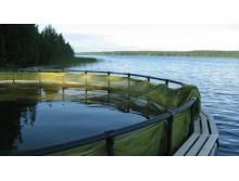 Садки для выращивания рыбы, садковые линии, сетные камеры, полки для рыбы