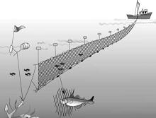 Сети рыболовные нестандартные на заказ